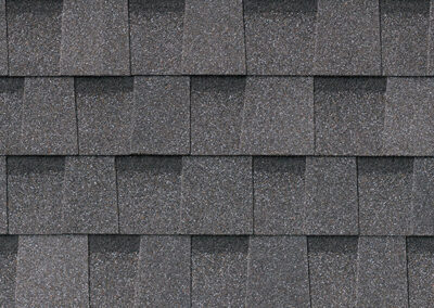 Pinnacle Pristine Pewter Roof Shingle